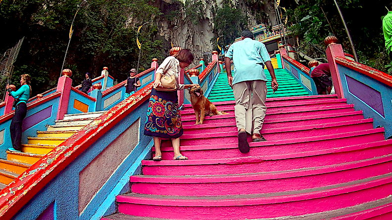 Friendly dog at the steps to the Batu Caves