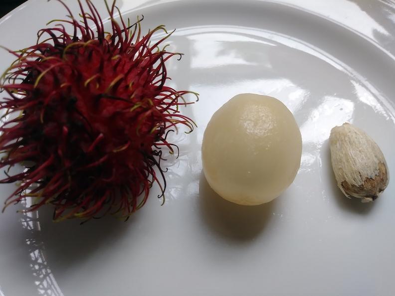 Rambutan outside of shell with seed